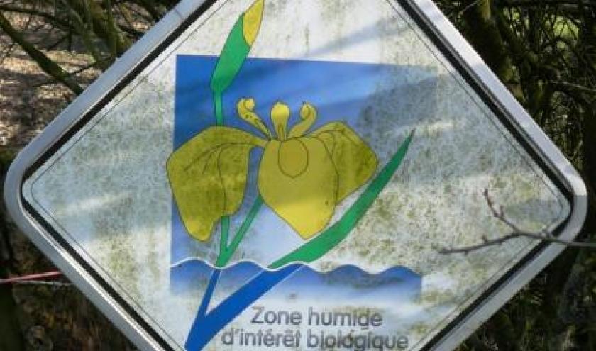 """Panneau """" Region Wallonne """"  fixe"""