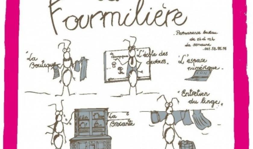 Jeux societe Fourmiliere Gedinne