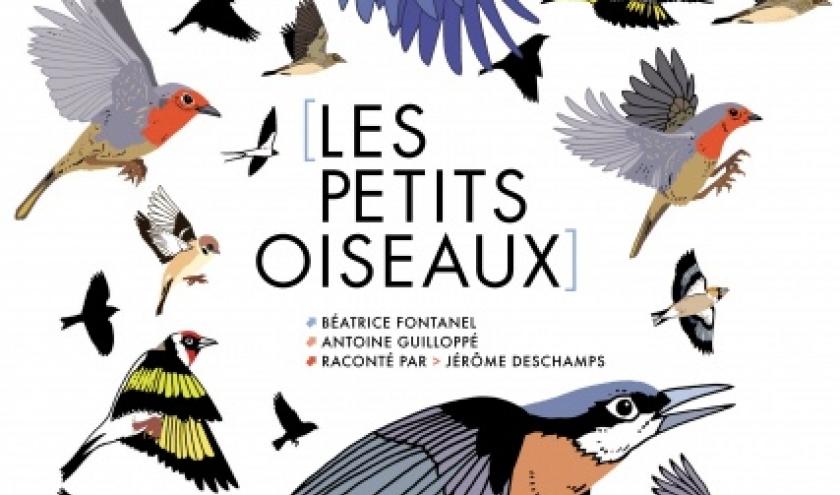 Les petits oiseaux  de Beatrice Fontanel  et Antoine Guilloppe   Editions Naive