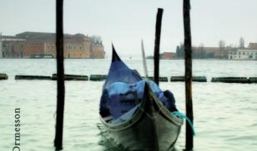Une annee à Venise de Lauren Elkin  Editions Heloise d'Oremesson.