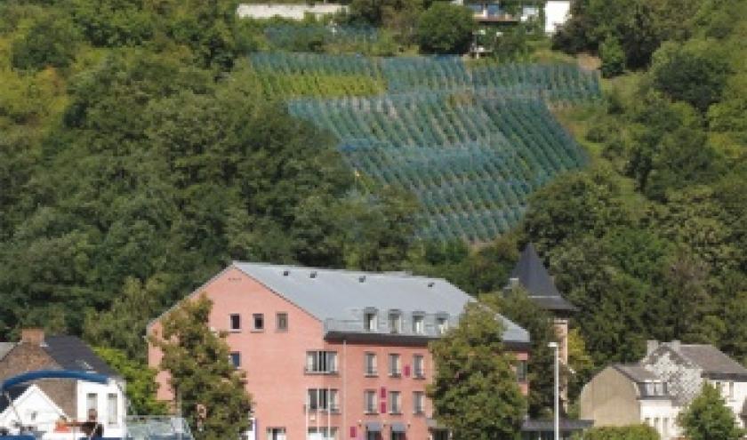 Vignobles de Sambre et de Meuse  12 siecles d histoire de Guy Durieux et Marc Vanel.