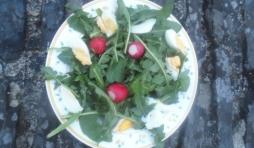 Petite salade de lapin, trois radis, quelques morceaux d'œufs dur.
