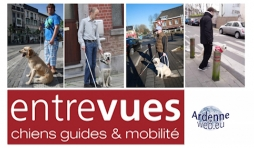 asbl entrevues : chiens guides