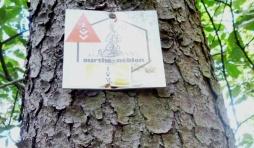 Balisage de l'ancien sentier Ourthe Néblon au niveau du point de vue de La Roche aux Faucons